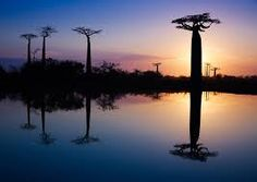 southafrica photography - Google Search