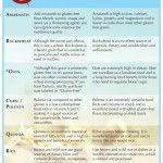 The Gluten Free Grains Guide