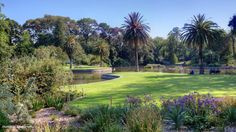 Top 20 things to do in Melbourne: Royal Botanic Gardens