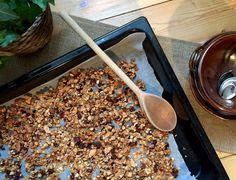 "Crunchy Raw Chocolate & Coconut Granola | HerbIvory [(h)əˈbivərē] her·biv·o·ry (noun): ""A consumption form in which an animal mainly eats plant material"""