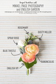 Mikkel Paige Photography Bouquet Breakdown with a boutonniere including blue thistle, spray roses, rosemary, english ivy and dusty miller by English Garden. #groomboutonniere #weddingbouquet #brightboutonniere #colorfulboutonniere
