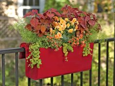 Beautiful Railing Planters for Your Fence or Deck Railing: Balcony Railing Planters | Balcony Planter Box | Railing Planters