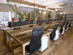 plants & desk Put some green in your office by contacting www.greendesign.com.au