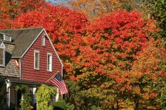 Enjoy life in the heart of Plantsville, CT with this awesome opportunity for Travel Registered Nurses specializing in Home Health