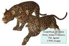 TW3D Two Jaguars by TW3DSTOCK.deviantart.com on @deviantART
