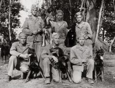 WWII War Dogs taking a break from training at Camp Lejeune, NC.