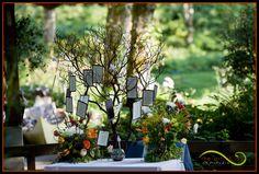 Seating Tree for an outdoor wedding Bridal Veil Lakes www.theartofjoy.biz  Lifestyle Wedding Photography Portland, Oregon