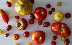 How to Make Summer Tomatoes Last Longer - SELF