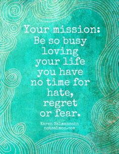 Your mission: be so busy loving your life you have no time for hate, regret or fear. Karen Salmansohn.