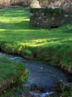 El agua en Galicia es vida