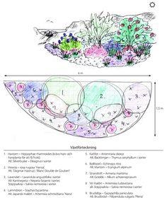 Rabatten nära havet Garden Design Plans, Planting Plan, Flower Landscape, Flower Beds, Garden Landscaping, Flowers, Plants, Gardening, Outdoor