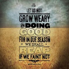 Let us not become weary in doing good, for at the proper time we will reap a harvest if we do not give up. - Galatians 6:9