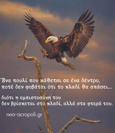Black Royalty, Greek Beauty, Greek Quotes, Way Of Life, True Words, Picture Quotes, Bald Eagle, Motivational Quotes, Wisdom