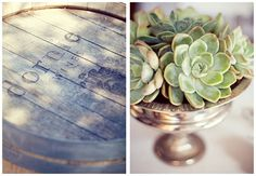 Succulents in pewter urn - so beautiful!