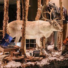 We're open from 1 PM till 6 PM  Come ans shop your Christmas essentials  #christmasshopping #checkpointmol #molcity #menshop #christmaswindow #visualmerchandiser #vm #windowshopping #merrychristmoose #moose #reindeer #visualmerchandising #etalage #kerstetalage #rendier #kerstmis #menswear @aglini_brand @xacusshirts @woodddesign @embraceskull @goosecraft @thegoodpeoplefashion @nenaandpasadena @neuwdenim @hugoboss @patriziapepe @briandales1955 @danielealessandrini @danielefiesoliitalia…