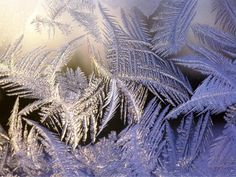 Ice Crystals Nature   Ice Crystals Close Up - nature wallpaper featuring natural phenomenon ...