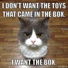 I want the BOX!