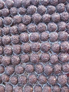 Similar to Lisa J's but these look a little better. These are the very best rum balls you will ever make, exactly what a Christmas rum ball should be and more, to-die-for delicious with a definite kick. Christmas Sweets, Christmas Cooking, Christmas Candy, Christmas Gifts, Christmas Parties, Christmas Goodies, Party Desserts, Cookie Desserts, Chocolate Desserts