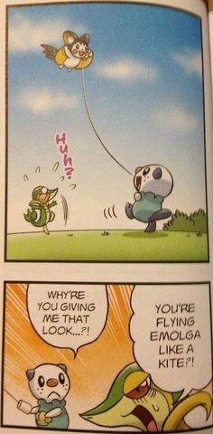 OMG it's so cute!! #funny #pokemon