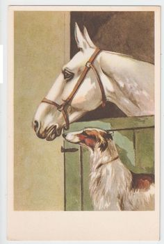 1930s ART DECO POSTCARD - HORSE & DOG - GREYHOUND - EDIT CECAMI 1123 ( B )