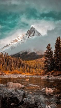 serenity - nature life on earth - wanderlust - explore - adventure - wilderness - wild - natural - mountains - fog - hiking - camping - beautiful - idea - ideas - inspiration - nature photography Hiking Photography, Landscape Photography, Summer Nature Photography, Wild Photography, Photography Business, Photography Ideas, Wild Nature, Nature Wallpaper, Nature Pictures