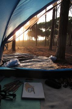 Golden sunrise views from the tent. :)