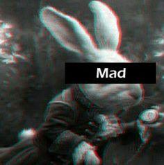 #mad #aliceinwonderland #wonderland