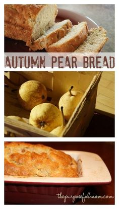 Ever wondered what to do with ripe pears (besides make them into baby food?) You can make some Autumn Pear Bread! My aunt gave me this wonderful recipe and in my usual style I changed some ingredients to try to make it healthier–it was a hit! Oreo Dessert, Dessert Bread, Fall Recipes, Baby Food Recipes, Baking Recipes, Autumn Bread Recipes, Recipe For Pear Bread, Recipe For Ripe Pears, Pear Loaf Recipes