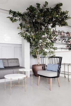 Restaurant as Enchanted Forest, Copenhagen Edition - Remodelista