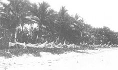 The Samoa Islands by Dr Augustin Kramer 1901 The large fish net.