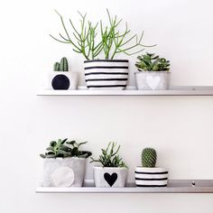 Plant Wall Inspiration for Your Home Tips - onlyhomely Plant Wall, Plant Decor, Interior Design Living Room, Living Room Decor, Striped Canvas, Plant Shelves, Inspiration Wall, Diy Home Decor, Succulents