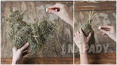Jarní slepička: Návod na dekorace ze sena | Prima nápady How To Dry Basil, Origami, Herbs, Plants, Origami Paper, Herb, Plant, Origami Art, Planets