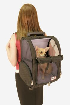 An approved airline dog, cat, and pet carrier that makes traveling ...