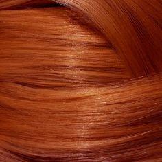 Intense Copper Blonde Permanent Hair Colour — My Hairdresser Online Copper Blonde, Light Ash Blonde, Beige Blonde, Shades Of Blonde, Copper Hair, Hair Color Shades, At Home Hair Color, Color Your Hair, New Hair Colors