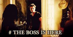 Stefan Salvatore Ripper GIFs - Find & Share on GIPHY