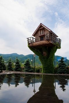 Will that be a room for one? Next time I am in the neighborhood, I'm staying here! Shiroi Koibito Park, Hokkaido, Japan. (Look closely, and you'll see the little face carved into the tree.) ~~ Houston Foodlovers Book Club http://weathertightroofinginc.com #roofer #roofing #rooferhemet #roofrepair #localroofer #reroof #hemet