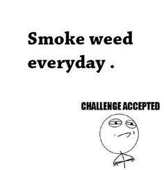 Smoke Weed Everyday. Challenege Accepted