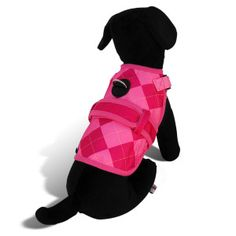 $31.99 Avant Garde Prep Dog Harness   Harnesses   PetSmart