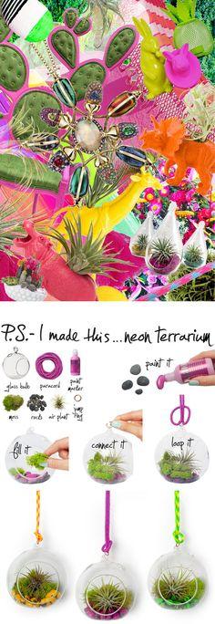 P.S.-I made this...Neon Terrarium #PSIMADETHIS #DIY #INSPIRATION #COLLAGE