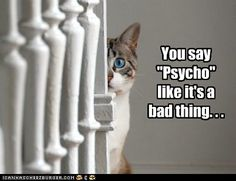 """You say """"psycho"""" like it's a bad thing..."""
