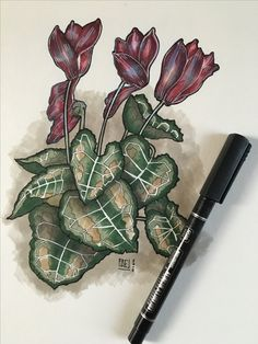 Flowers  Tecnique: copic and pen. #flowers #drawing #copic #myart #pen