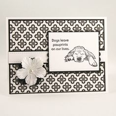 Pet Sympathy Card  Loss of a Pet  Sympathy Card for by TrioCards, $4.75