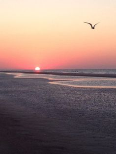Sunset on @Sarah Chintomby Chintomby Chintomby Hilton Head