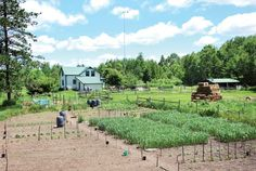 You don't need dozens of acres to become self sufficient. Through careful planning, selection and land use, you can be self sufficient on just two acres.