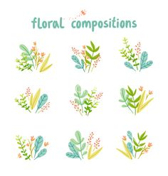 Flowers and leaves compositions collection vector - by stolenpencil on VectorStock®
