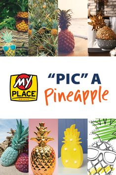 """Pic"" a Pineapple! We have enjoyed seeing all of the amazing entries that have come in so far. Submit a picture of your own personalized Pineapple Pete or any Pineapple on your summer vacations to marketing@myplacehotels.com or tag your social media posts with #myplacemypic. Blackbear Songs, Summer Vacations, Dollar Tree, Pineapple, Ads, Social Media, Posts, Marketing, Amazing"