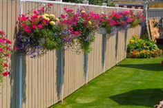 Looking for some fence planters ideas? Check out these great fence planters ideas that are sure to give you that right feeling to redecorate your garden Backyard Fences, Backyard Landscaping, Backyard Privacy, Privacy Fence Landscaping, Driveway Fence, Landscaping Ideas, Nice Backyard, Front Fence, Modern Backyard