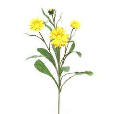 Fleur Daisy Mum Spray (Set of 6)