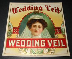 Hey, I found this really awesome Etsy listing at https://www.etsy.com/listing/83698719/1900s-antique-wedding-veil-victorian