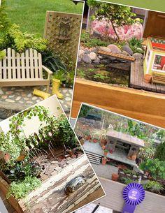 My New Fun is doing Mini Gardens